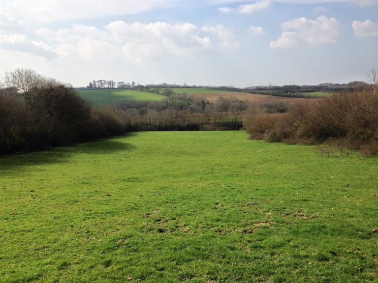 what is permanent pasture land